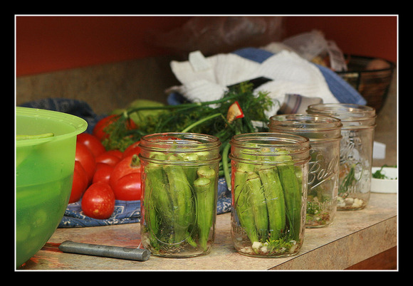 Pickled Okra 8.jpg