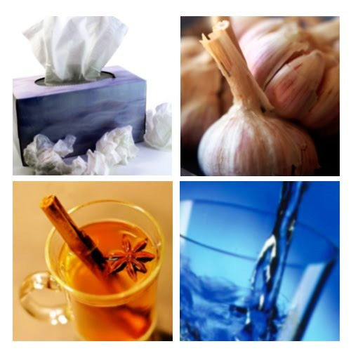 Alternative Remedies For The Cold